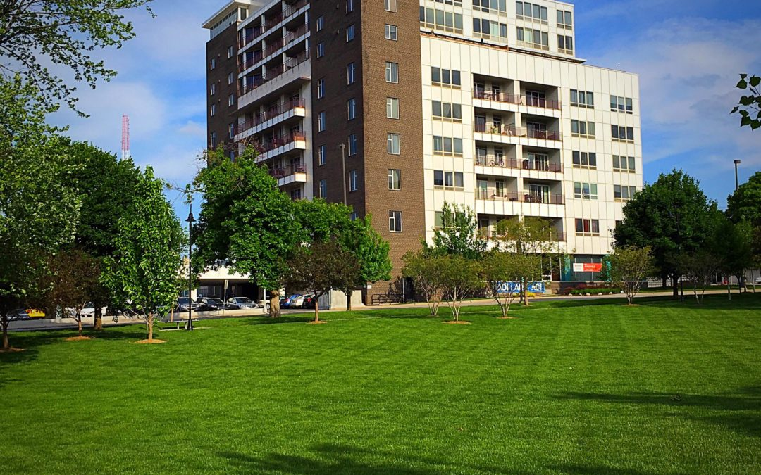 You Live in Midtown Omaha, Wouldn't You Like To Have a Yard?