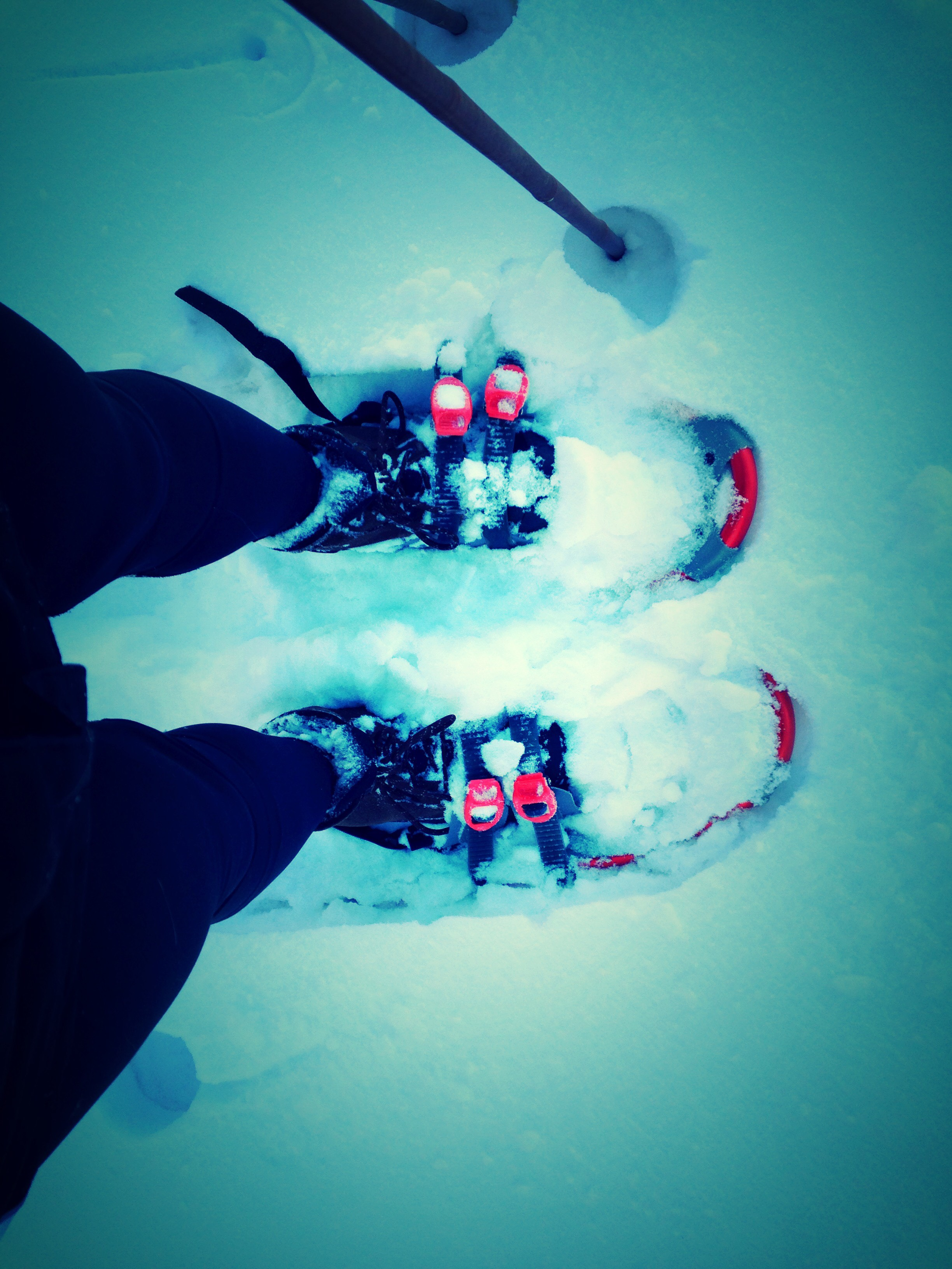 Update on Active Commuting in Omaha! - Probably not going to use the snowshoes to commute!!