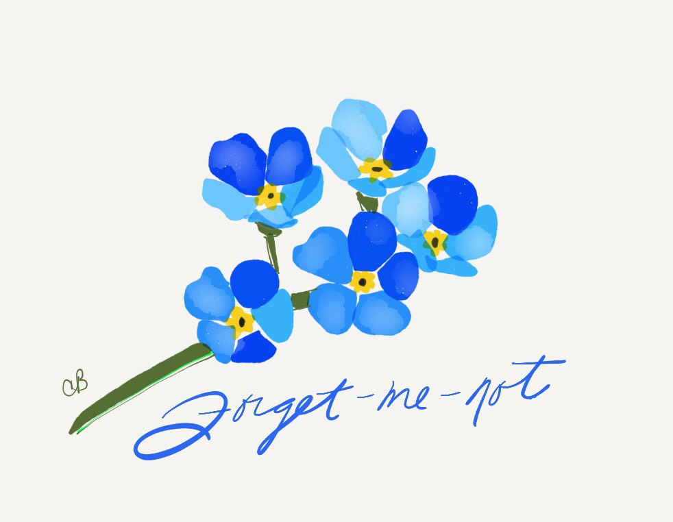 Forget Me Not - Balcony Gardens Omaha